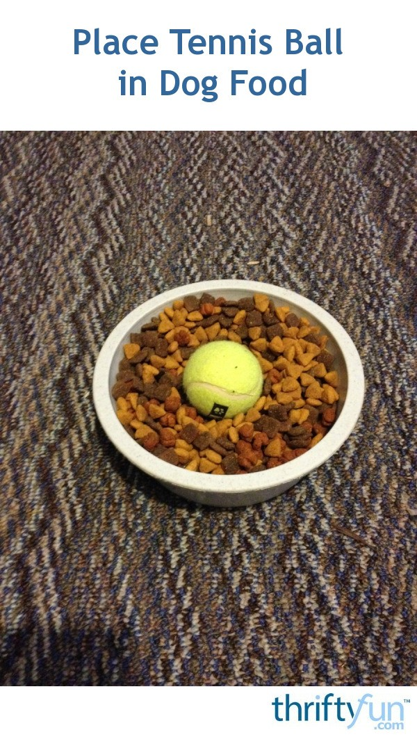Place tennis ball in dog food thriftyfun forumfinder Gallery