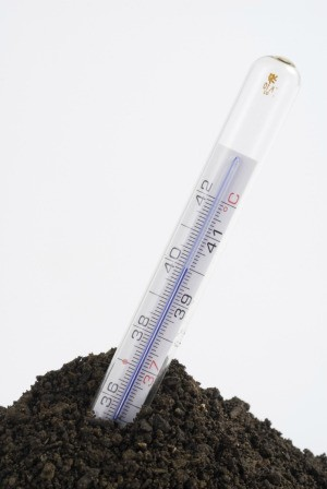 Thermometer Taking Soil Temperature