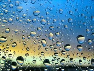 Water Spots on Window