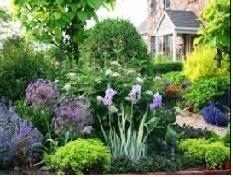 Garden photo.