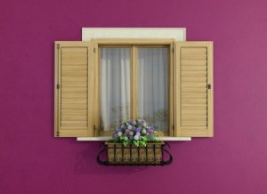 Functional Window Shutters