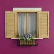 Functional Window Shutters