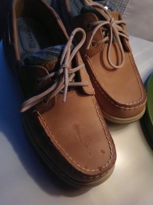 Tree sap on shoe.