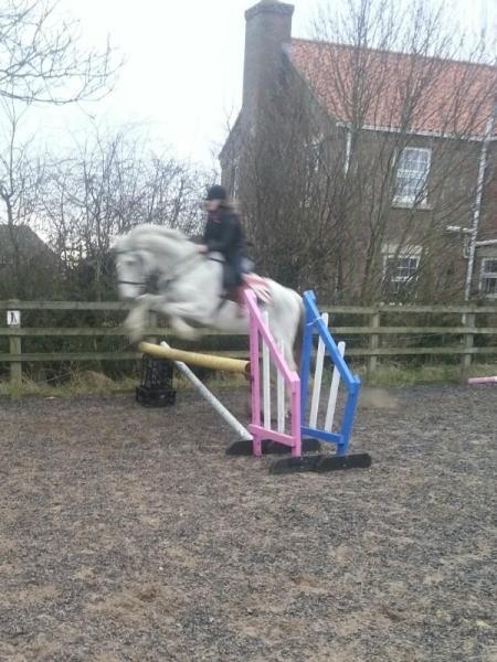 Tips on English Riding