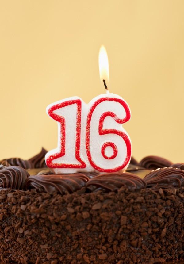 16th Birthday Gift Ideas For Boys Thriftyfun