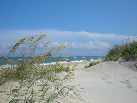 Sand Dunes (Cape Hatteras, NC)