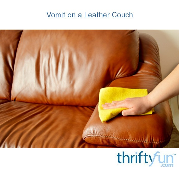 Vomit On A Leather Couch Thriftyfun