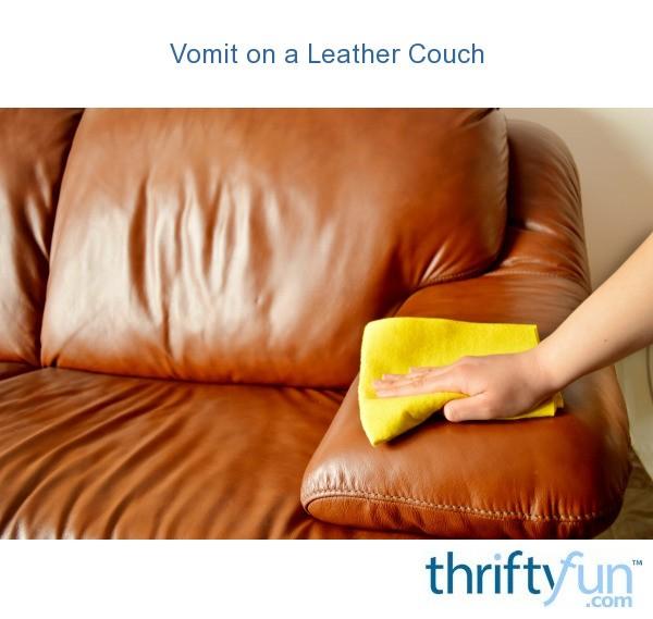 Brilliant Vomit On A Leather Couch Thriftyfun Inzonedesignstudio Interior Chair Design Inzonedesignstudiocom