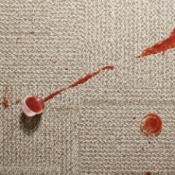 Ketchup Spilled on Carpet