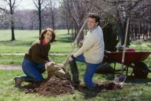 Couple Celebrating Arbor Day by Planting Tree