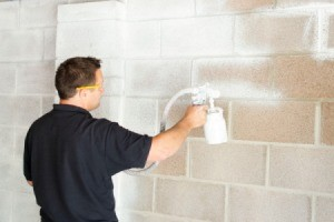 Man Using Paint Sprayer