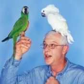 Man with Pet Cockatiels
