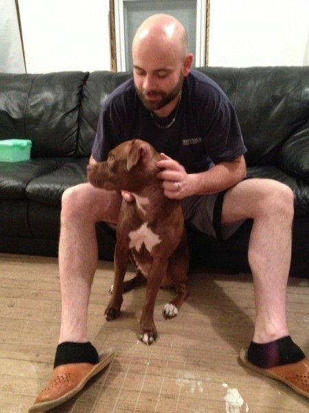 Man sitting on couch petting a red Pit Bull.