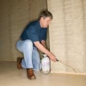 An Exterminator Working in a Basement