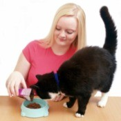 Woman Feeding Her Cat