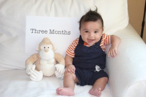 Take Monthly Photos of Baby