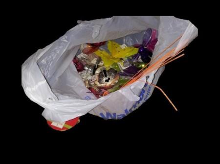 Walmart bag of bugs.
