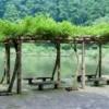 Building Natural Garden Architecture
