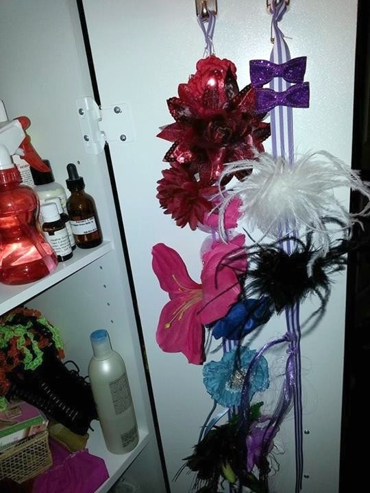 Organizing Hair Accessories ThriftyFun