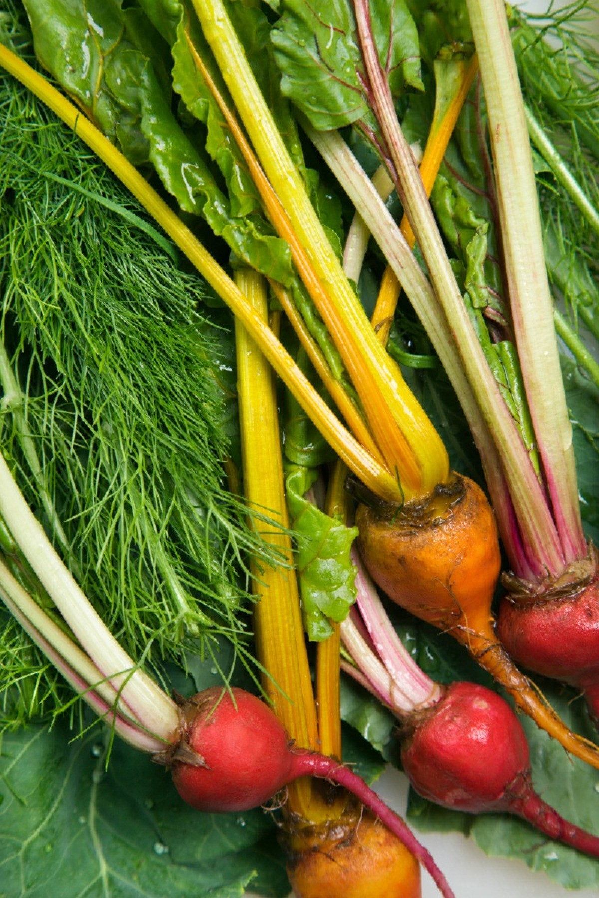 Recipes Using Root Vegetables | ThriftyFun