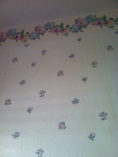 Small pink and blue flower print wallpaper.