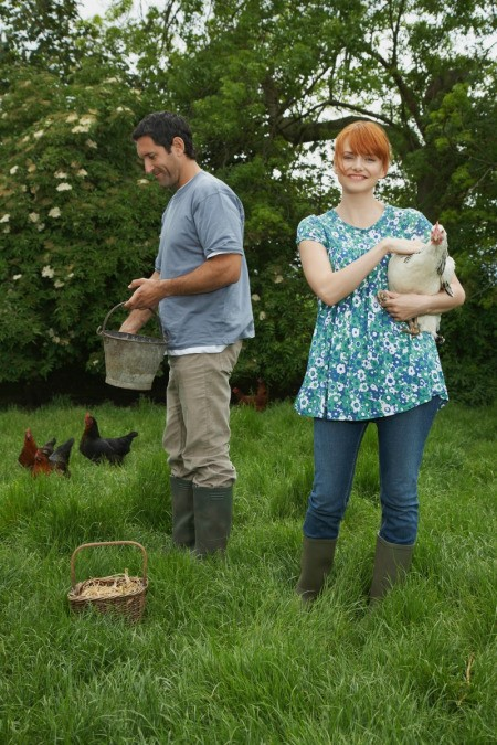 Couple Caring for Their Chickens