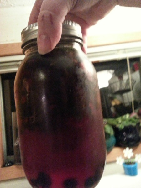 Strawberry, Blueberry, and Mint Vitamin Water