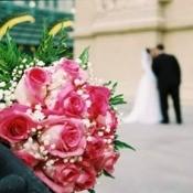 Closeup of roses.