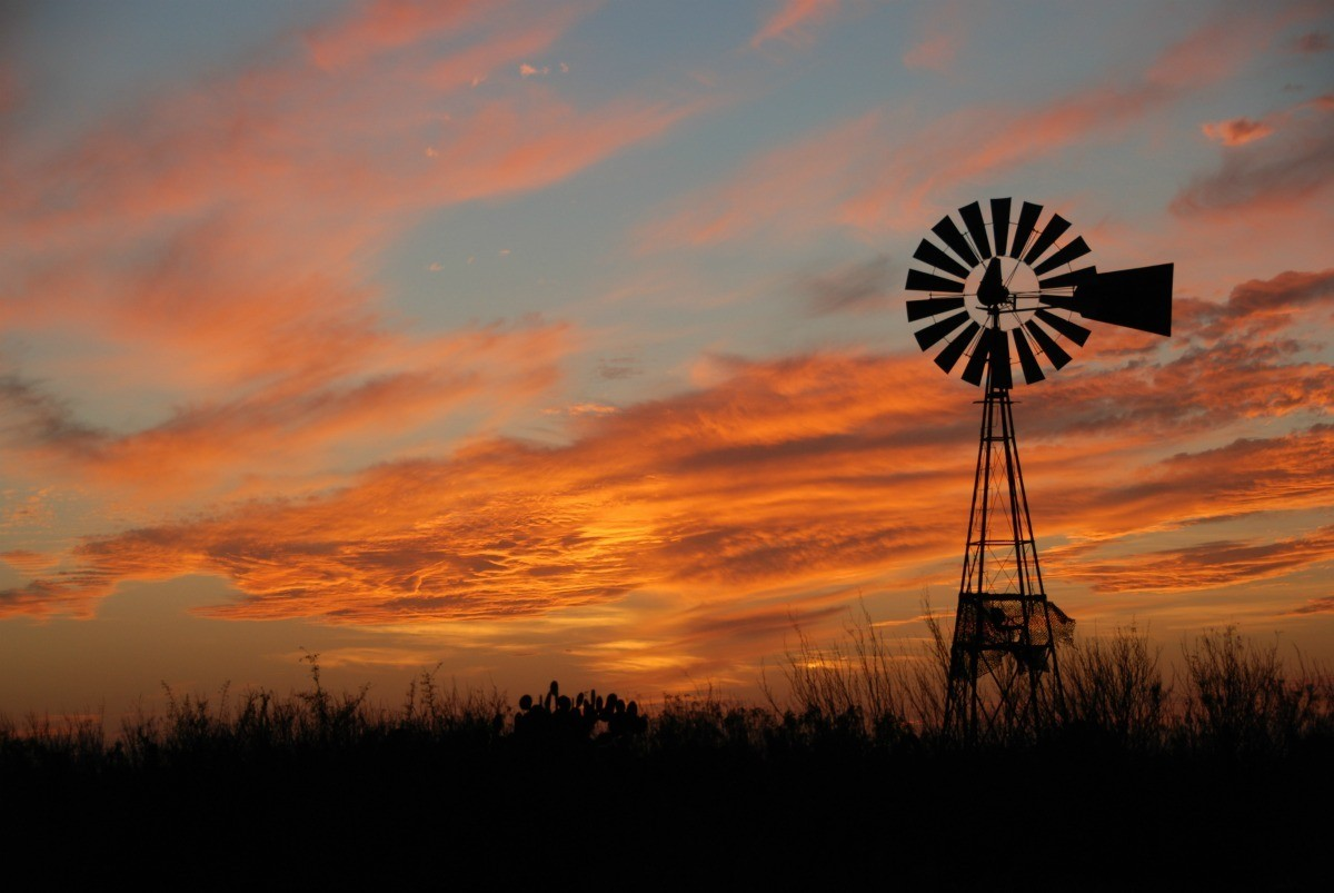 Image result for Texas Scenery