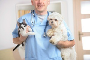 A happy veterinarian holding a dog and a cat.