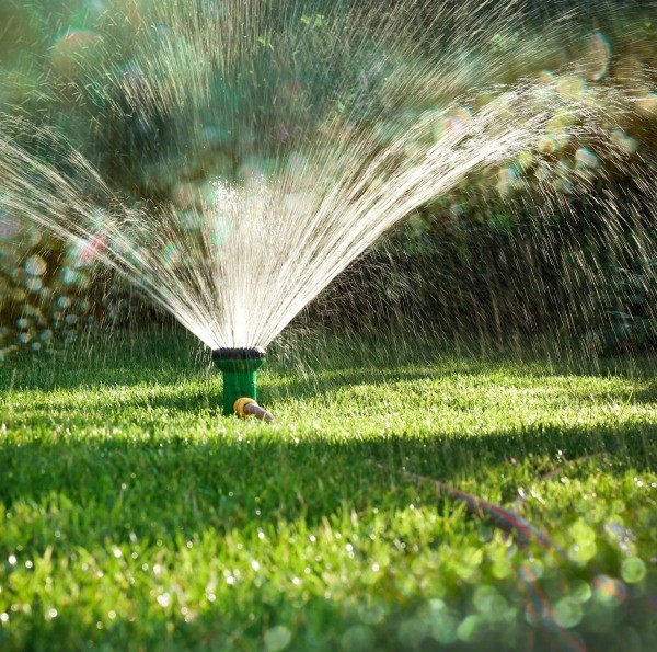 Tips For Watering Your Lawn Thriftyfun