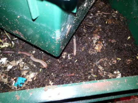 composted material