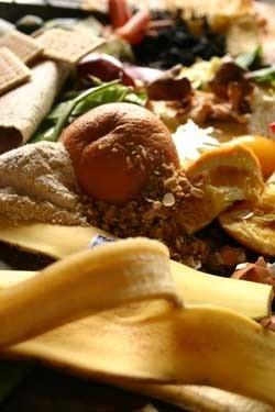 Composting veggie and fruit scraps.