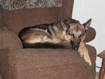 Lying in an armchair.