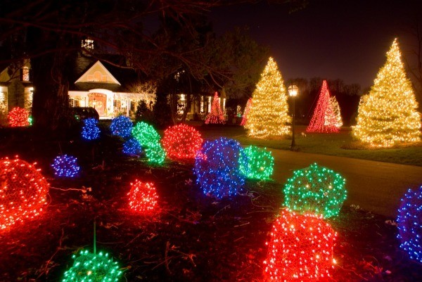 christmas lights in a front yard