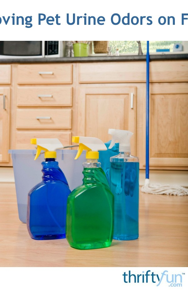 Cleaning Pet Urine Odors On Floors Thriftyfun