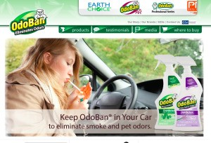 Screenshot of Odoban's website.