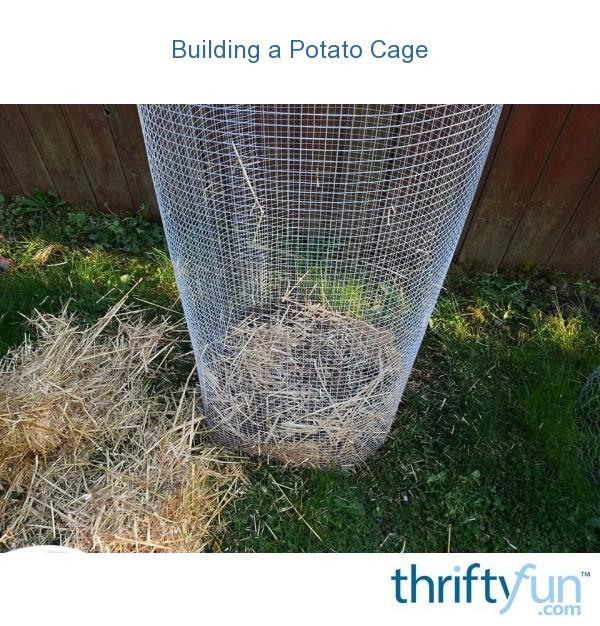 Building A Potato Cage