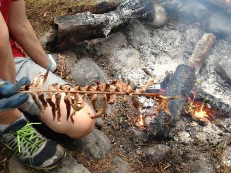 Sword fern near fire