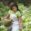 Woman Picking Vegetable from her  Garden