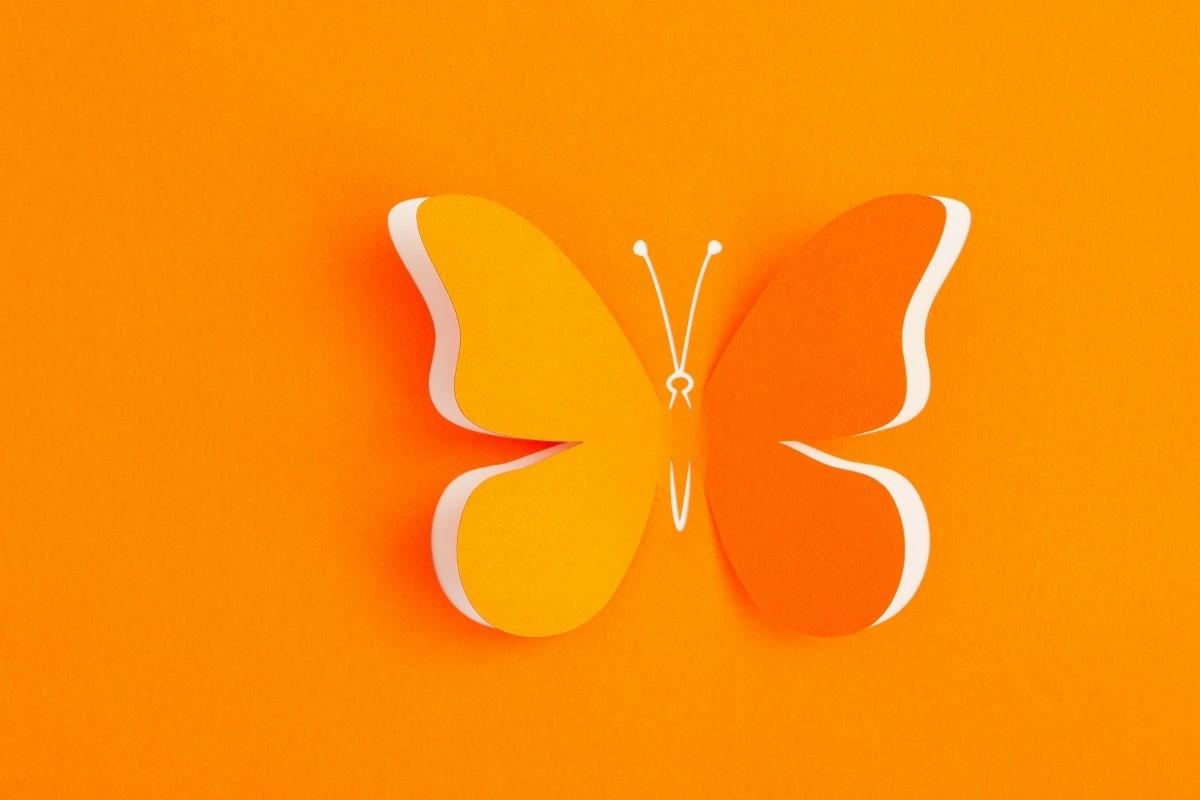 Butterfly Craft Ideas Thriftyfun