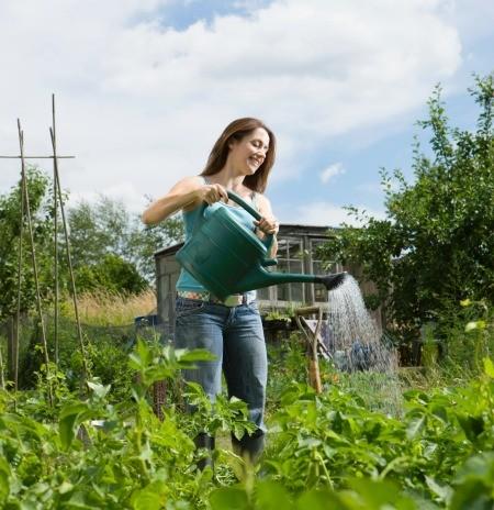 woman watering in her garden