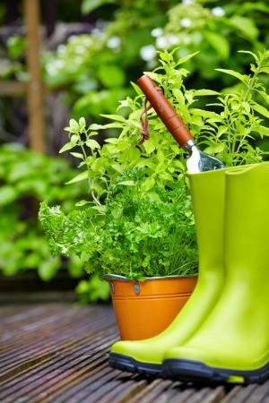 gardening boots