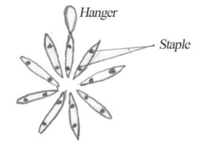 Six Pack Snowflake