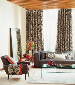 Curtains and Rug
