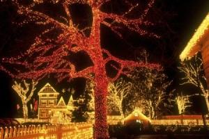 holiday lights