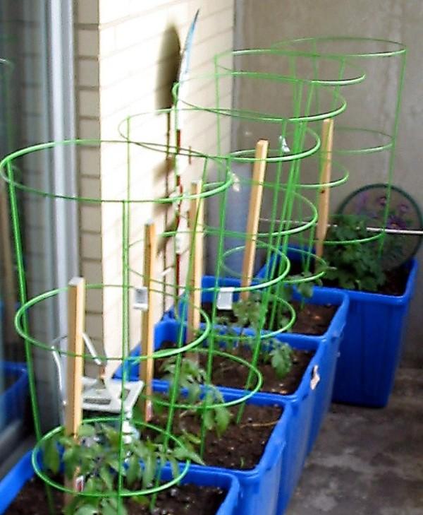 Apartment Balcony Garden Vegetables Pots