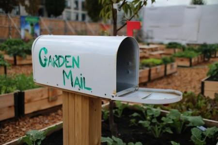 maibox in garden