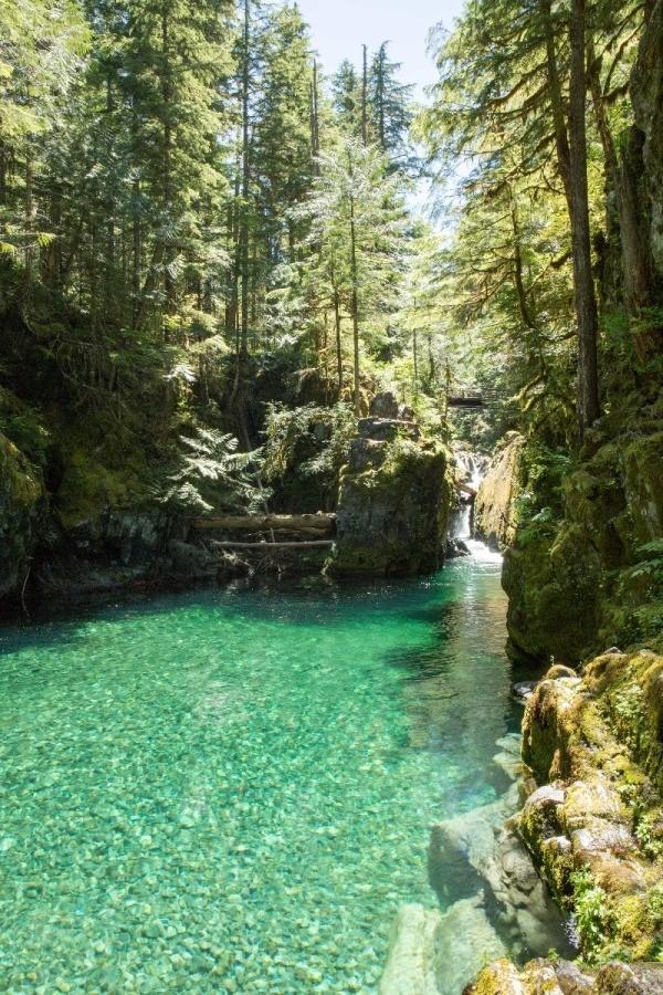 Visiting Opal Creek Oregon Thriftyfun