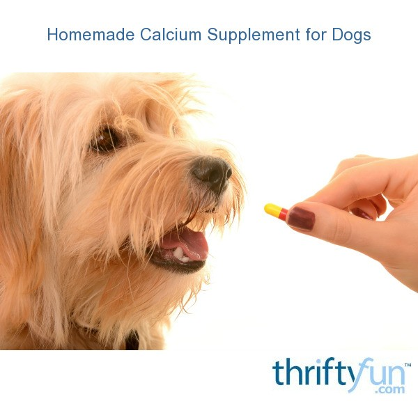 Homemade Calcium Supplement For Dogs